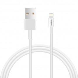 Câble Lightning pour 1 mètre